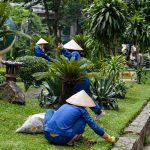 Gardening works at the park in Hanoi