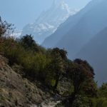 Machhapuchhre - The Fish Tail