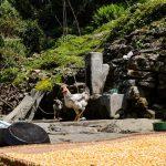 Village life in the Annapurna Region