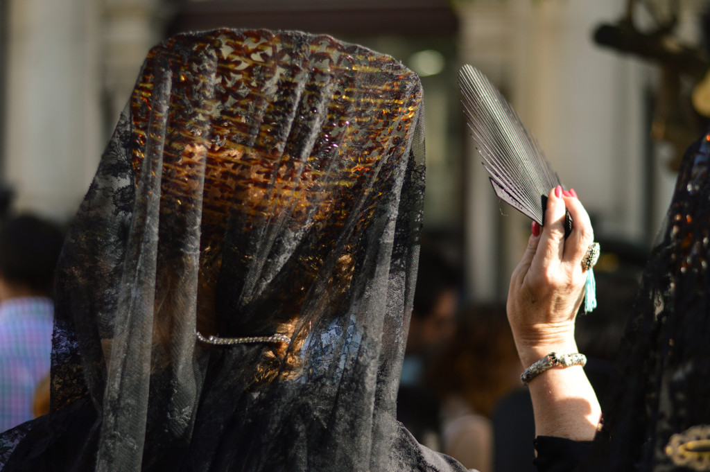 Traditional mantilla veil