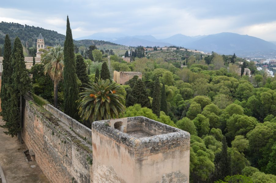 A view from the Alcazaba