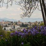Springtime in Granada