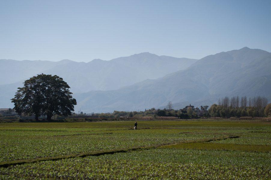 Beautiful scenery around Dali