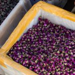Dried flowers at Zhongyi Market