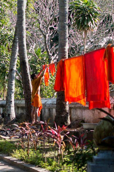 Buddhist monk in Luang Prabang