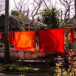 Orange clad robes